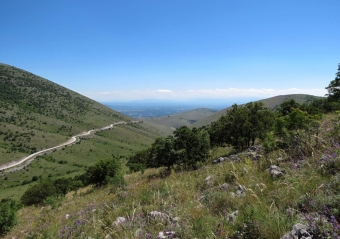 Stepi v řeckém pohoří Askion. Kredit: Bartoňová et al. (2018).