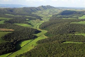 Fragmentovaný atlantický les v Usina Serra Grande, Brazílie. Kredit: leia mais.