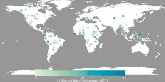 Lidské populace ve Standardním mezikulturním vzorku. Tmavý odstín modré barvy značí společnosti, ve kterých má větší podíl mužů více než jednu manželku. Kredit: Minocher et al. (2019).