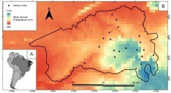 Místa odběru vzorků v Národním parku Catimbau a rozložení srážek. Kredit: Pinho et al. (2019) Basic & Applied Ecology.