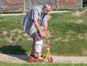 Alloparentální péče nebývá procházkou růžovým sadem. Kredit: KF / Wikimedia Commons.