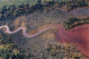 Důl Alderamac před obnovením ekosystému. Kredit: Norascon