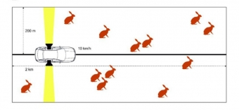 Monitorování zajíců pomocí automobilu a světel. Kredit: Pavliska et al. (2018), Mammalian Biology.