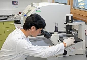 V laboratoři tkáňových kultur probíhají neinfekční experimenty